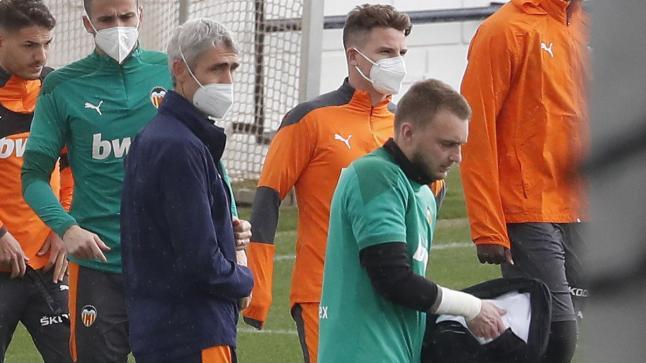 سيليسين يهاجم مدرب منتخب هولندا بعد استبعاده من قائمة المنتخب المشاركة في اليورو